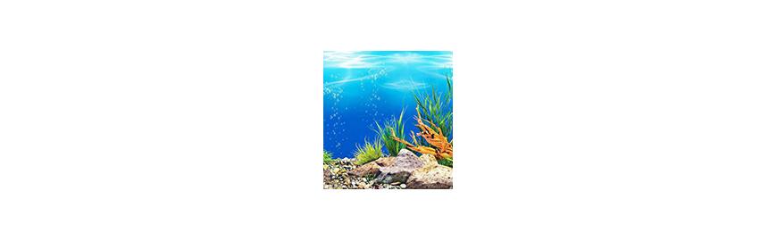 Tła do akwarium