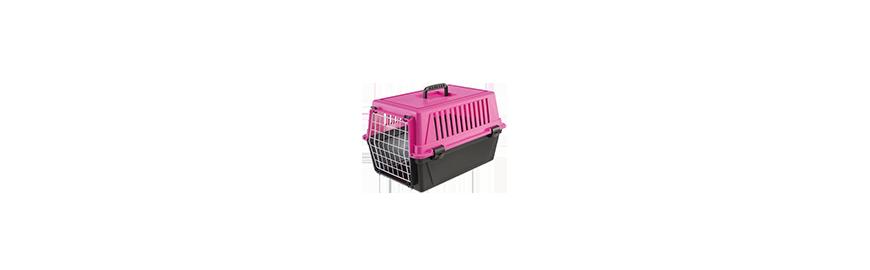 Transportery dla kota