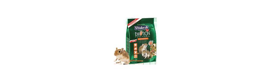 Karmy dla myszoskoczka